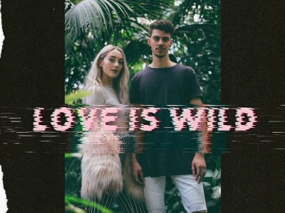 Hoffey - Love Is Wild
