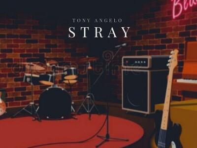 STRAY (5)